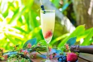 Buderim Ginger Bubbly Thyme Champagne Cocktail Recipe