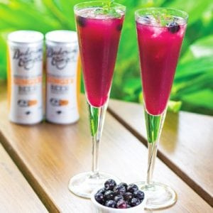 Buderim Ginger Blueberry Ginger Fizz Recipe