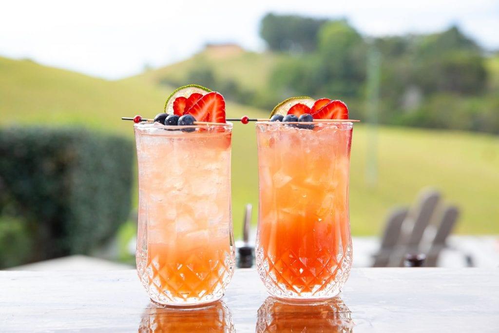 Recipe Spiced Berry Mule02