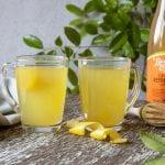 Recipe Ginger Turmeric Lemon Tonic