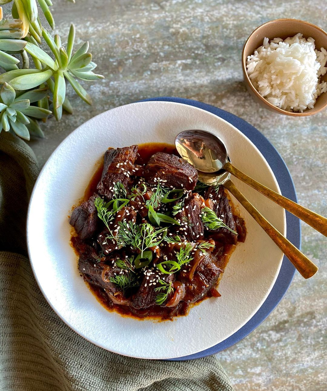 Recipe Chinese Style Braised Beef With Ginger